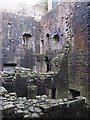 NY4996 : Inside courtyard of Hermitage Castle by Sarah Charlesworth