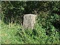 TL3049 : Trig point on Croydon Hill by Mark Hurn