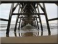 NZ5035 : Under the Pier : Week 32