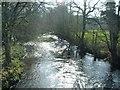 SX0963 : Plenty of water by roger geach