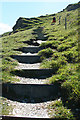 SX0382 : St Teath: steps in the path by Martin Bodman