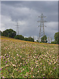 SU8699 : Pylons and overgrown land, Hughenden by Andrew Smith