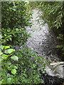 SO7528 : River Leadon flowing downstream by Pauline E
