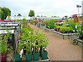 SU9377 : Squires Garden Centre plant area by Jonathan Billinger