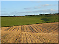 SU4184 : Farmland, Lockinge by Andrew Smith