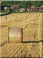 SU8198 : Farmland, Saunderton by Andrew Smith