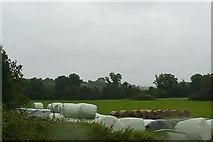 M9839 : Farmland at Mihanboy by Graham Horn