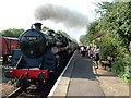 TL1597 : Steam engine and train, Ferry Meadows station by Paul Shreeve