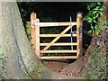 SU7991 : Gate, Long Copse by Andrew Smith