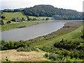 SX4267 : River Tamar, near Bohetherick by Roger Cornfoot