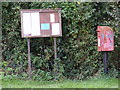 TM3671 : Notice Board &amp; The Green Postbox in Sibton Green by Adrian Cable