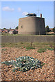 TM2933 : Martello Tower P by Bob Jones