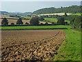 SU8294 : Farmland, West Wycombe by Andrew Smith