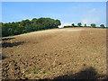 SU7993 : Farmland, Cadmore End by Andrew Smith