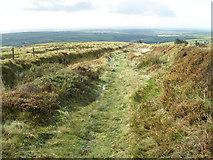SN0729 : Hill track, near Rosebush by Roger Cornfoot