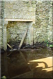 G9875 : Fireplace in ruined farmhouse by louise price