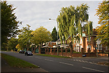 TQ2688 : The Bishops Avenue by Martin Addison