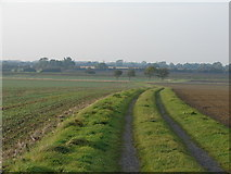 TF4382 : Walking to Gayton le Marsh by Ian Paterson