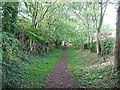 NZ3344 : Footpath approaching Low Pittington by Roger Smith