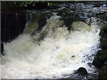 NO2501 : Lower waterfall on Lothrie Burn at Riverside park. by geojoc