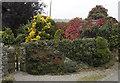 SD4476 : Garden at Far Arnside by Tom Richardson