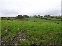 C2508 : Drumcarn Townland by Kenneth  Allen