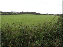 C2511 : Errity Townland by Kenneth  Allen