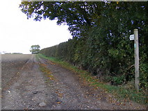 TM2765 : Footpath to A1120 at Button's Hill, B1116 Dennington Road & Peppers Wash by Adrian Cable