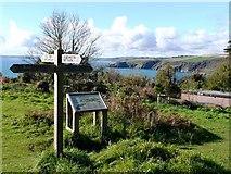 SX9049 : Brownstone Battery, South Devon Coast path by Tom Jolliffe