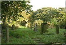 SE1223 : St Anne in  the Grove Graveyard - Church Lane by Betty Longbottom