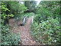 SJ6476 : Bridge over Cogshall Brook in Kennel Wood by Chris Wimbush