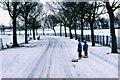 NS6467 : Snow by Hogganfield Loch by Sarah Charlesworth