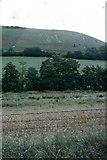 ST6601 : The Cerne Abbas Giant across the Fields by Sarah Charlesworth
