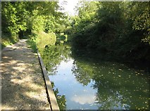 SU7251 : Repaired towpath by Sandy B