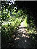 SU7251 : Basingstoke canal towpath by Sandy B