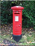 TQ1362 : Edward VIII postbox, Blackhills by Mike Quinn