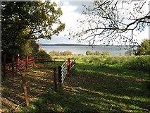N3957 : Lough Owel by kevin higgins