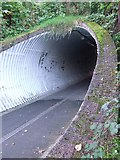 NS3373 : Kilmacolm Road underpass by Thomas Nugent