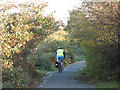 TQ3578 : Cycleway near Surrey Canal Road by Stephen Craven