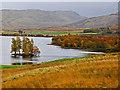NN8637 : Autumn colours at Loch Freuchie by Dr Richard Murray