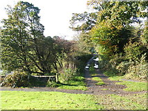 NS4077 : Footpath to Dumbarton by Lairich Rig