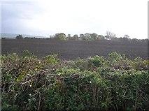 C3412 : Monreagh Townland by Kenneth  Allen