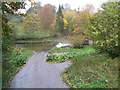 NY6121 : Autumnal colours at the ford on the R.Lyvennet by David Brown
