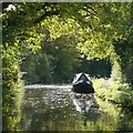 SO8684 : Staffordshire and Worcestershire Canal, Stourton, Staffordshire by Roger  Kidd