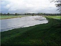 NY0982 : River Annan in flood by Lynne Kirton