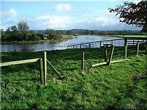 NY0982 : River Annan in flood, Halleaths by Lynne Kirton
