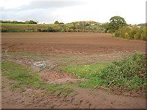 SO7334 : View over farmland by Pauline E