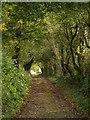 ST5738 : Worthy Lane by Derek Harper