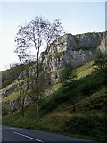 ST4754 : Cheddar Gorge by Pam Goodey
