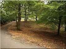ST3162 : Grove Park by Derek Harper